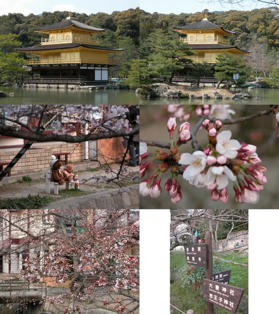 Kyoto432